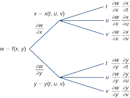 A diagram that starts with w = f(x, y). Along the first branch, it is written ∂w/∂x, then x = x(t, u, v), at which point it breaks into another three subbranches: the first subbranch says t and then ∂w/∂x ∂x/∂t; the second subbranch says u and then ∂w/∂x ∂x/∂u; and the third subbranch says v and then ∂w/∂x ∂x/∂v. Along the second branch, it is written ∂w/∂y, then y = y(t, u, v), at which point it breaks into another three subbranches: the first subbranch says t and then ∂w/∂y ∂y/∂t; the second subbranch says u and then ∂w/∂y ∂y/∂u; and the third subbranch says v and then ∂w/∂y ∂y/∂v.